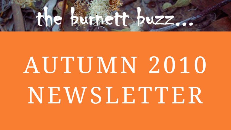 the burnett buzz… Autumn 2010