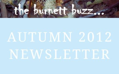 the burnett buzz… Autumn 2012