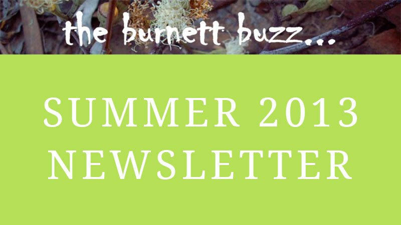 the burnett buzz… Summer 2013