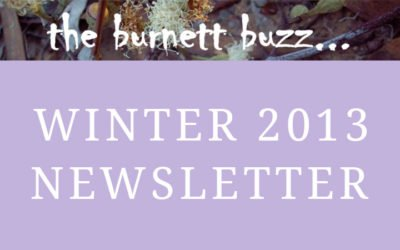 the burnett buzz… Winter 2013