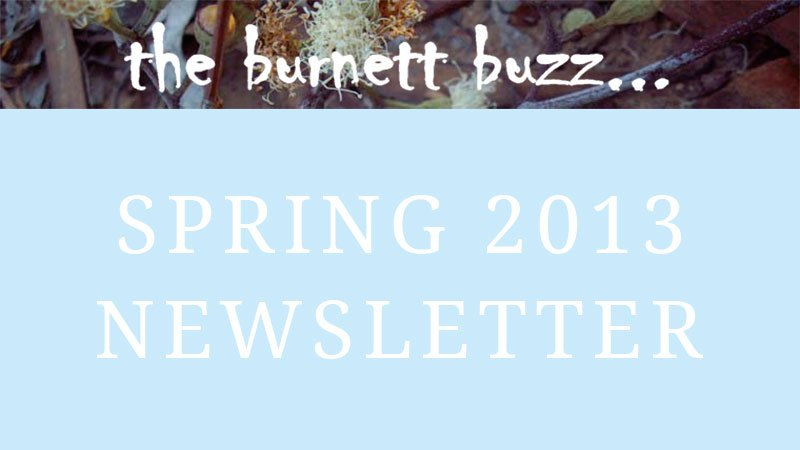the burnett buzz… Spring 2013