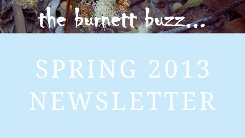 the burnett buzz… Spring 2013