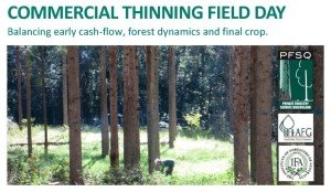 Commercial-thinning-FD-flyer-Mar-7..-1024x594