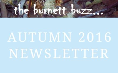 the burnett buzz… Autumn 2016