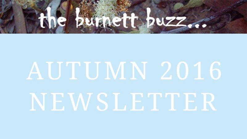 the burnett buzz… Autumn 2016