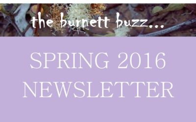 The Burnett Buzz – Spring 2016