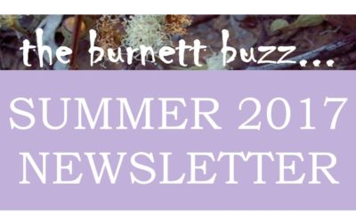 The Burnett Buzz – Summer 2017
