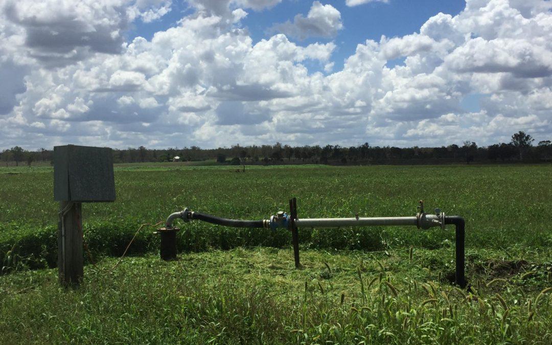 Understanding black soils in the South Burnett