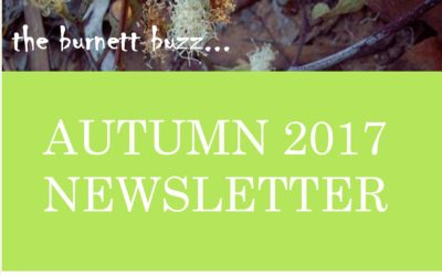 The Burnett Buzz – Autumn 2017