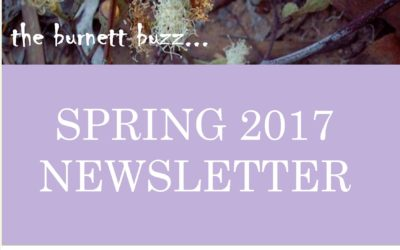 The Burnett Buzz – Spring 2017