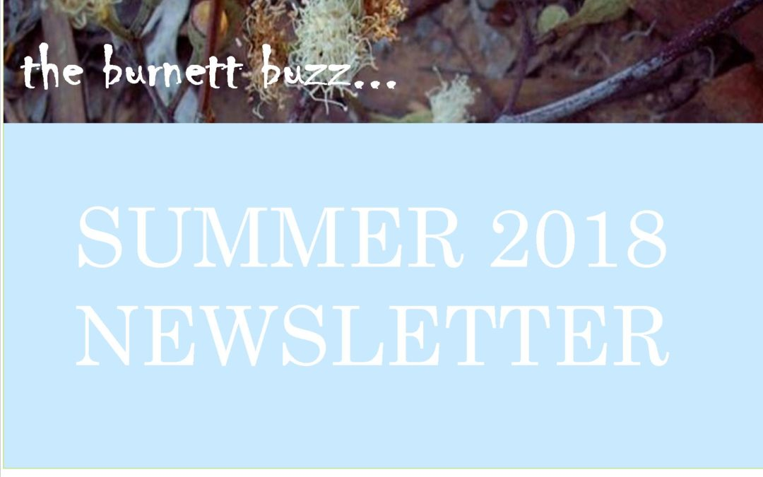 The Burnett Buzz….Summer 2018