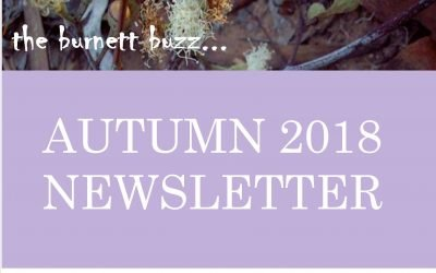 The Burnett Buzz….Autumn 2018