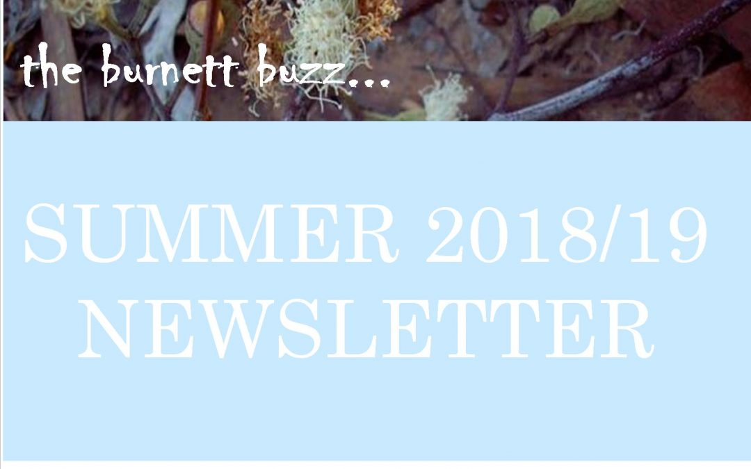 The Burnett Buzz…..Summer 2018/2019