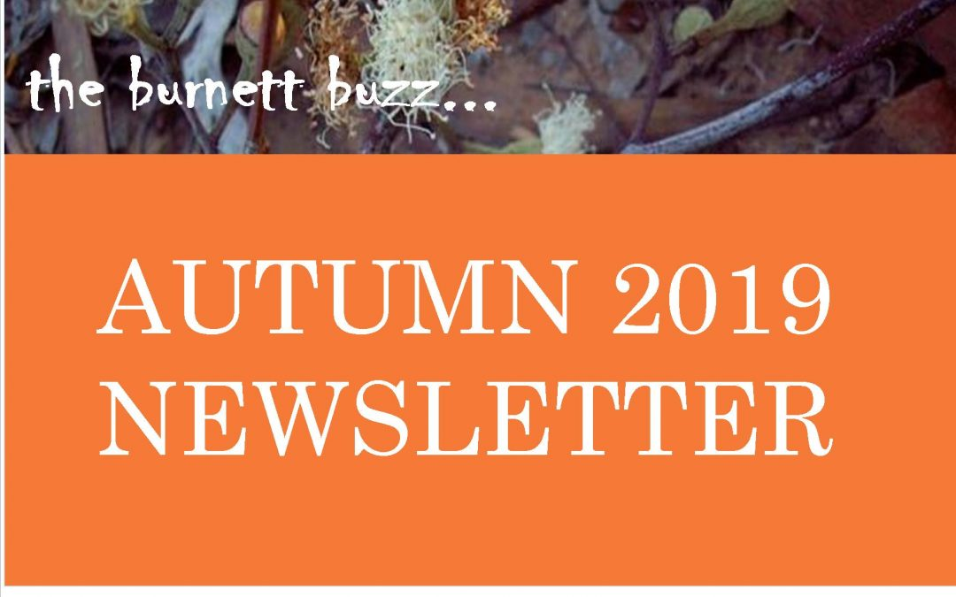 The Burnett Buzz……Autumn 2019