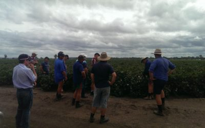 Southern Queensland Cropping bus tour