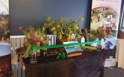 Monto Agricultural Strategy Launch