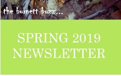 The Burnett Buzz…..Spring 2019