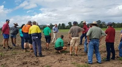 Combined Growers Monto Tour