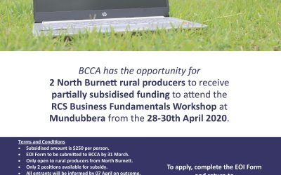 Partially Subsidised Funding to attend RCS Business Fundamentals Workshop