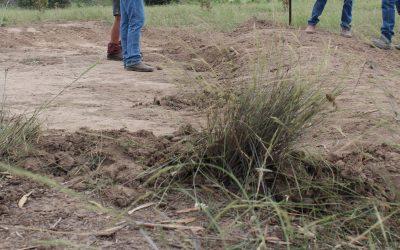 Erosion & Whoa Boy workshop