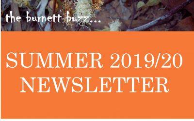 the burnett buzz…Summer 2020