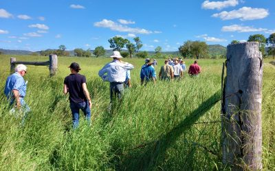 Managing Pasture in a Variable Climate Workshop